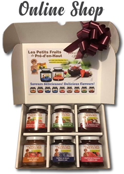 Les Petits Fruits Online Shop-English
